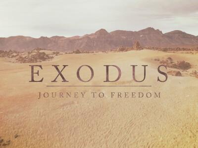 Exodus 8-10